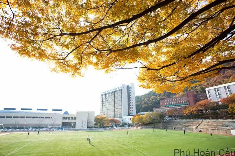 Chi phí khi tham gia học tập tại đại học Daejin Hàn Quốc là bao nhiêu?