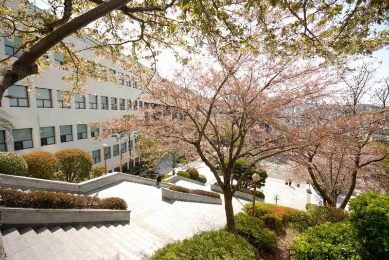 Đại học Daejin Hàn Quốc - TOP những ngôi trường đào tạo đa ngành