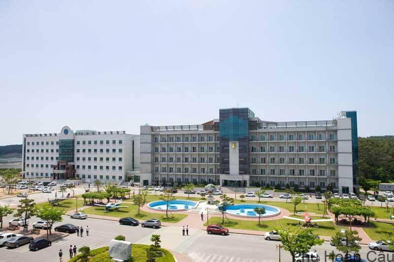 Đại học Hanseo Hàn Quốc - ngôi trường chuyên nghiệp hóa duy nhất