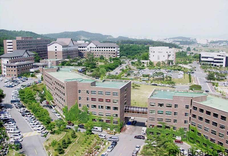 Ưu thế giảng dạy và chất lượng đào tạo đại học Honam Hàn Quốc