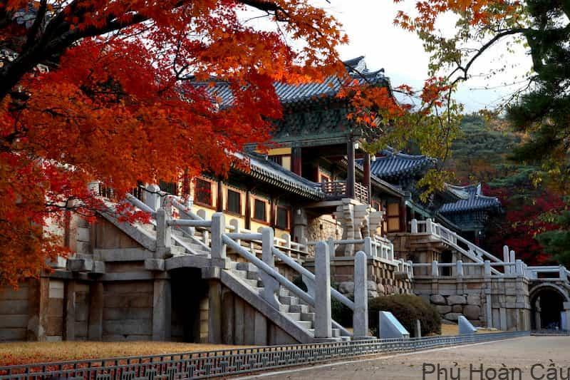 Bulguksa: danh lam thắng cảnh và lịch sử số 1 Hàn Quốc tại Gyeongju