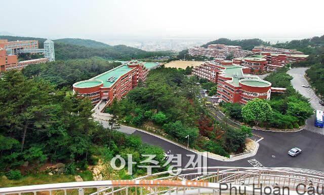trường đại học kinh tế ở busan đại học Silla