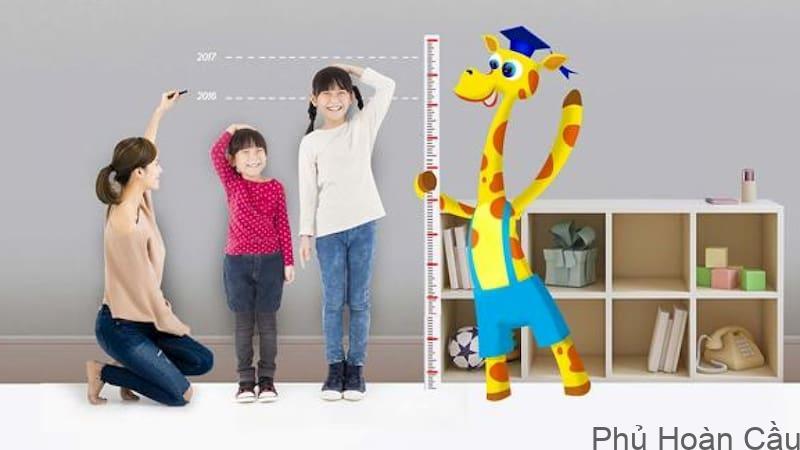 Chiều cao trung bình của người Hàn Quốc: tại sao người Hàn Quốc cao?