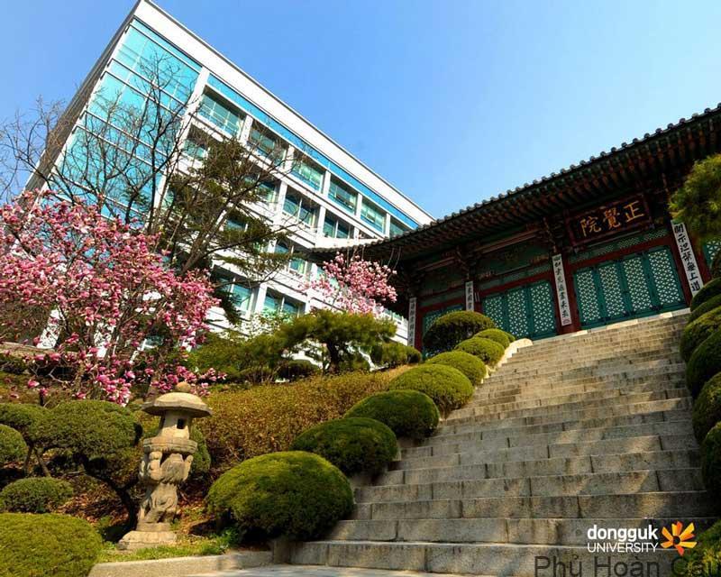 Đại học Donguk Hàn Quốc