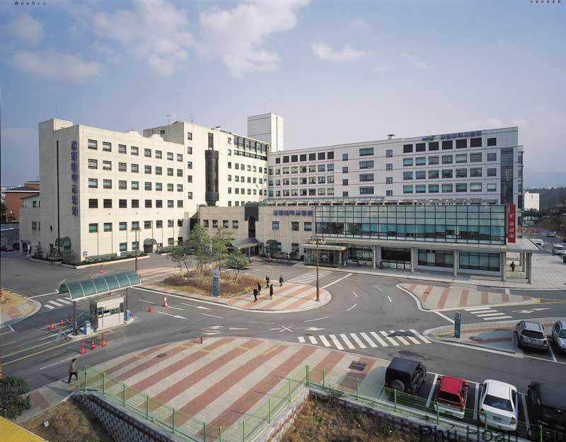 Đại học Kangwon – Điểm đến trong mơ của mọi du học sinh