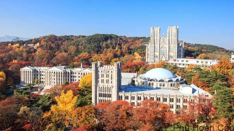 Đại học Kyunghee Seoul - ngôi trường tổng thống Moon Jae In đã từng theo học