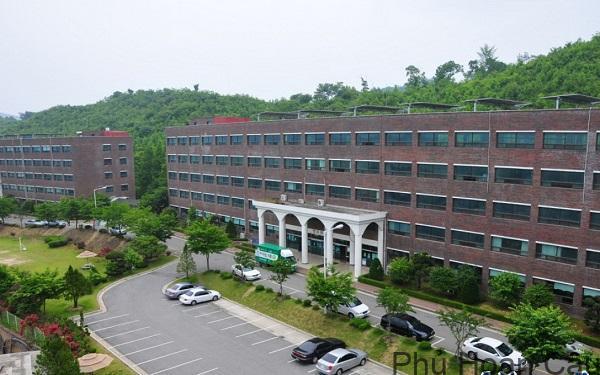 Đại học nghệ thuật Yewon