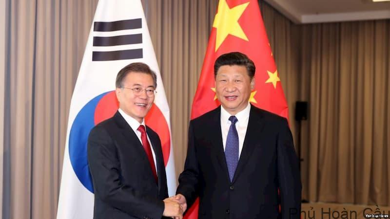 Du học Hàn Quốc hay Trung Quốc