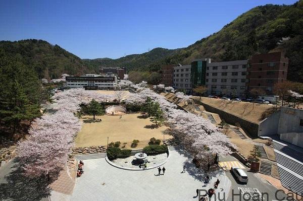 Khuôn viên đẹp của Youngsan University