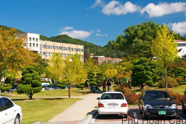 Khuôn viên trường học rộng rãi
