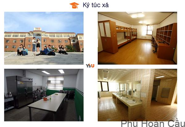 Ký túc xá Đại học Youngsan