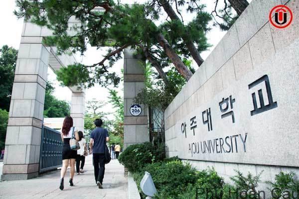 Trường Đại học Achu Hàn Quốc có nhiều ngành học hấp dẫn