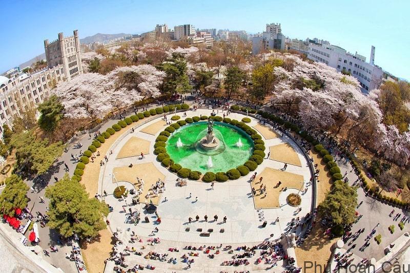 Trường Đại học Achu Hàn Quốc