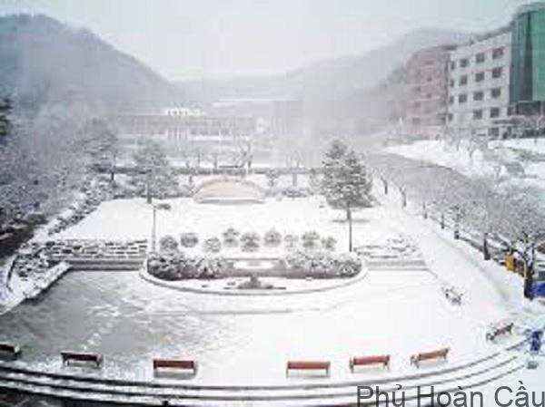 Trường Đại học Youngsan vào mùa đông