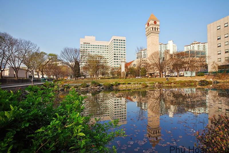Trường đại học Sejong là trường học tiên phong về lĩnh vực ẩm thực và khách sạn