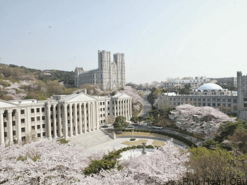Trường đại học Kyung Hee tại Hàn Quốc