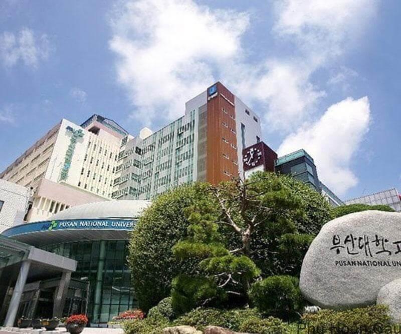 Đại học quốc gia Pusan - đích đến mơ ước của rất nhiều du học sinh
