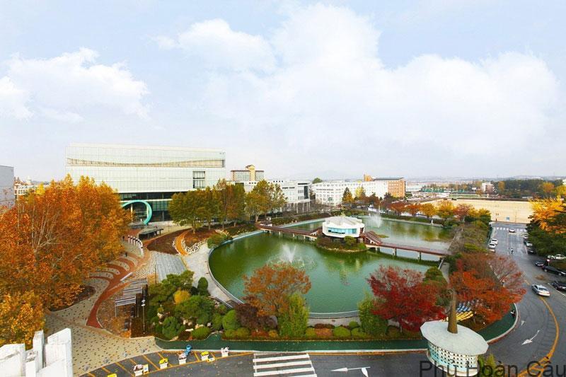 Đại học Wonkwang – Trường có du học sinh Việt Nam nhiều nhất Hàn Quốc