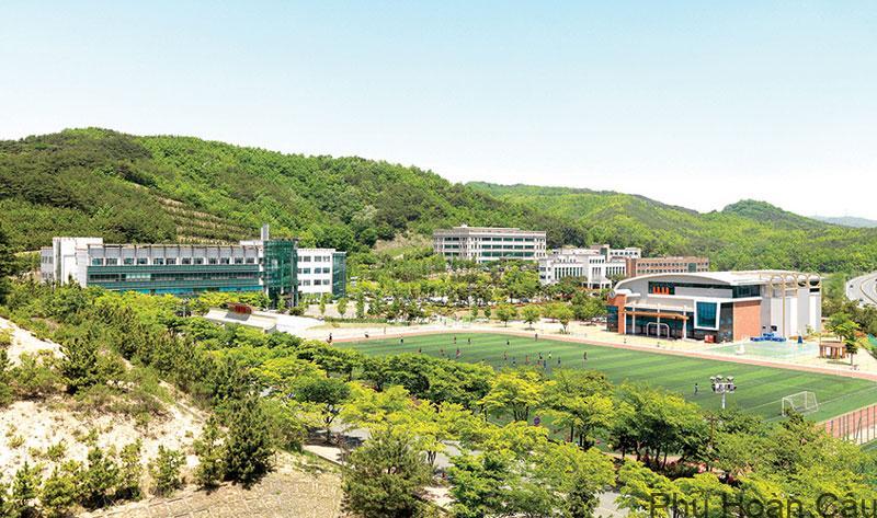 Hiện nay, trường Uiduk đang liên kết với khoảng 13 trường đại học ở các nước khác nhau