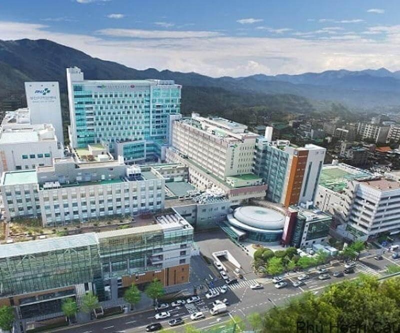 Pusan thuốc TOP trường tốt nhất Hàn Quốc