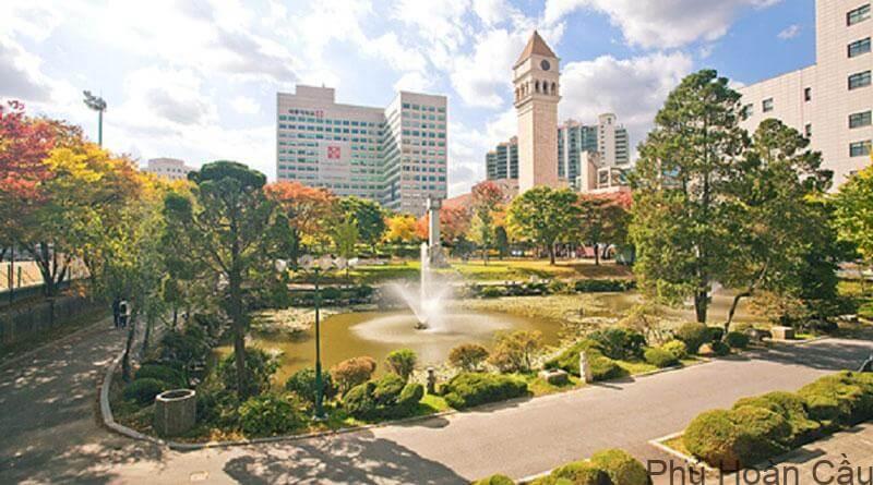 Trường Sejong có nhiều chương trình học bổng khác nhau