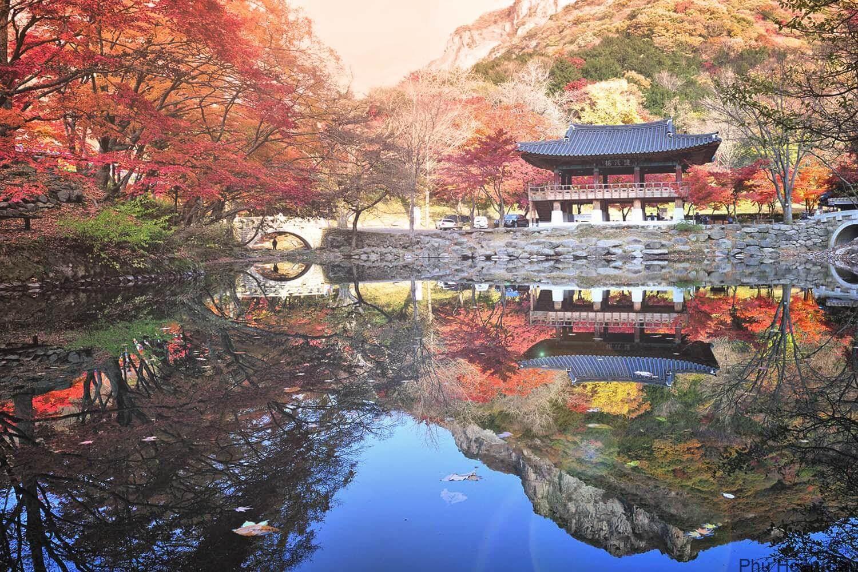 Vườn quốc gia Naejangsan